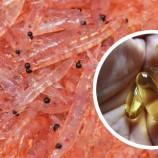 Conheça o Óleo de Krill e seus Benefícios