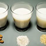 Leite de arroz vegetal, Benefícios, Onde comprar, Melhor Marca