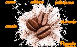 Café Termogênico Evolucion Coffee – Pré-Treino
