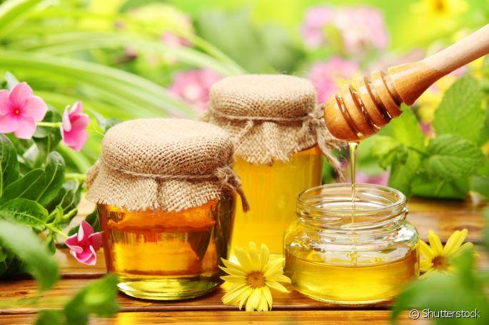 Benefícios do Mel de Abelha. Como escolher um mel puro?