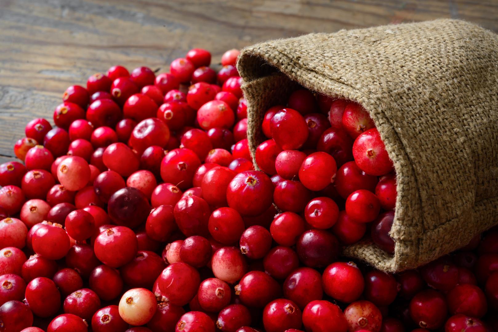 Cranberry Previne Infecção do Trato Urinário