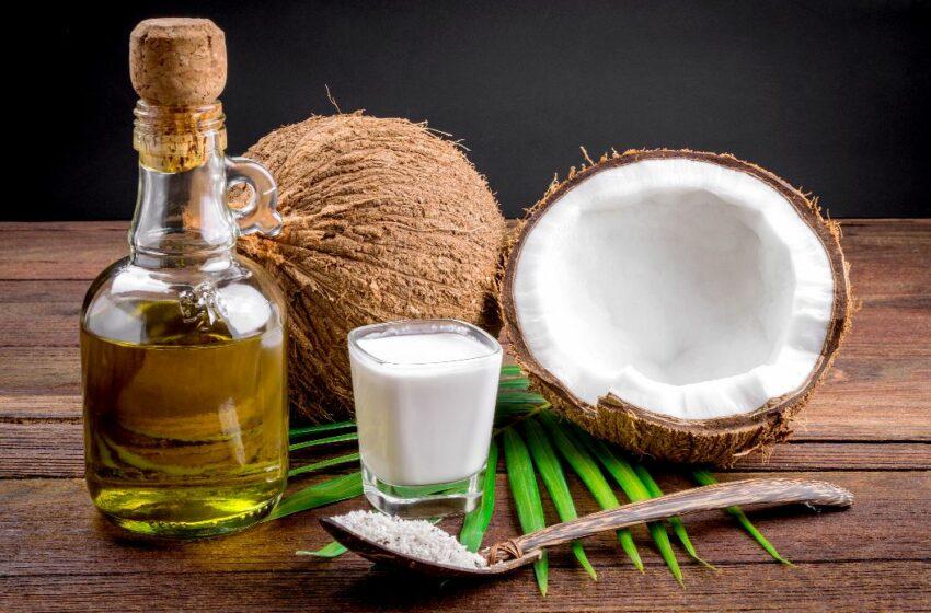 Benefícios do Coco e Óleo de Coco Natural e Como Consumir